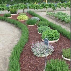 Foto-Gartendetail-1
