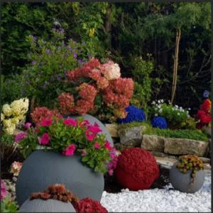 Foto-Gartendetail