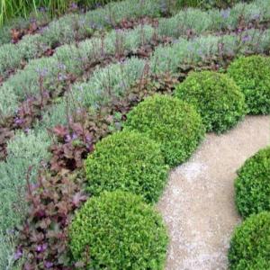 Gartendetail-2